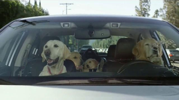 Subaru TV Spot, 'Dog Tested: Windshield Wiper' - Thumbnail 2