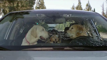 Subaru TV Spot, 'Dog Tested: Windshield Wiper' - Thumbnail 6