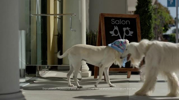Subaru TV Spot, 'Dog Tested: Bad Hair Day' - Thumbnail 2