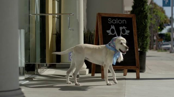 Subaru TV Spot, 'Dog Tested: Bad Hair Day' - Thumbnail 3