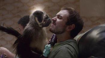 Mountain Dew Kickstart Super Bowl 2016 TV Spot, 'Puppymonkeybaby'