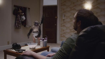 Mountain Dew Kickstart Super Bowl 2016 TV Spot, 'Puppymonkeybaby' - Thumbnail 3