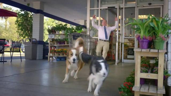Doritos: 2016 Crash the Super Bowl Finalist, 'Doritos Dogs' - Thumbnail 4