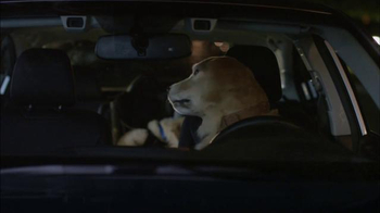 Subaru TV Spot, 'Dog Tested: Puppy' - Thumbnail 7