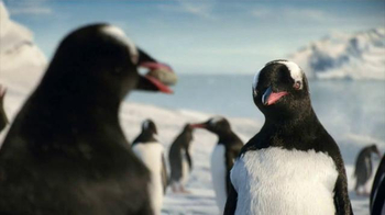 Kay Jewelers Diamonds in Rhythm TV Spot, 'Penguin Kiss: Valentine's Day: Save 30%' - Thumbnail 2