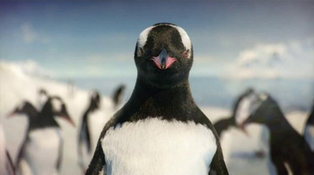 Kay Jewelers Diamonds in Rhythm TV Spot, 'Penguin Kiss: Valentine's Day: Save 30%' - Thumbnail 5