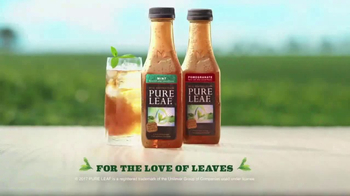 Pure Leaf Tea TV Spot, 'Mint and Pomegranate' - Thumbnail 10