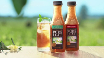 Pure Leaf Tea TV Spot, 'Mint and Pomegranate' - Thumbnail 3