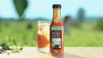 Pure Leaf Unsweetened Black Tea TV Spot, 'Fresh Picked' - Thumbnail 1