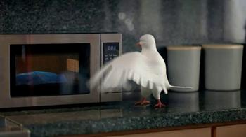 Birds Eye TV Spot, 'Bird Choir' - Thumbnail 2