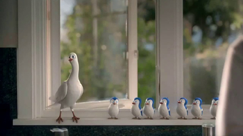 Birds Eye TV Spot, 'Bird Choir' - 3461 commercial airings