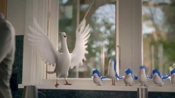 Birds Eye TV Spot, 'Bird Choir' - Thumbnail 4
