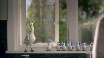 Bird Choir thumbnail