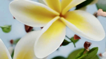 Herbal Essences bio:renew TV Spot, 'Let Life In' - Thumbnail 5