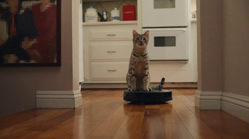 GoDaddy Super Bowl 2017 Teaser, 'Roomba Cats' - Thumbnail 1