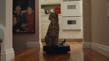 GoDaddy Super Bowl 2017 Teaser, 'Roomba Cats'