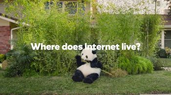 GoDaddy Super Bowl 2017 Teaser, 'Sneezing Panda' - Thumbnail 4