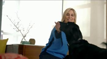 Bissell SpotBot Pet TV Spot, 'Black Labs: Antibacterial' - Thumbnail 7
