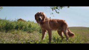 A Dog's Purpose - Alternate Trailer 13