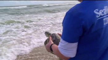 SeaWorld Aquatica TV Spot, 'New Friends' - Thumbnail 4