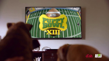 Dish Network Remote Finder TV Spot, 'Animal Planet: Puppy Bowl Sunday' - Thumbnail 2