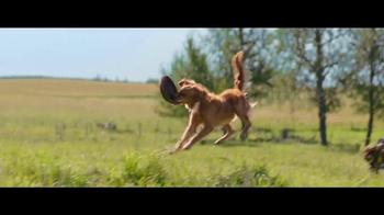 A Dog's Purpose - Alternate Trailer 14