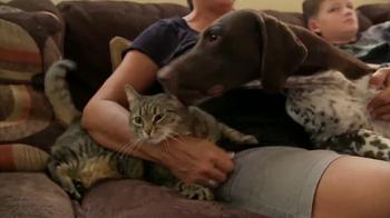 American Kennel Club TV Spot, 'Responsible Breeders' - Thumbnail 4