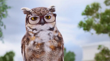 America's Best Contacts and Eyeglasses TV Spot, 'Who?' - Thumbnail 3