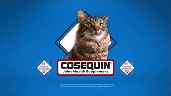 Cosequin TV Spot, 'Gizmo' - Thumbnail 1