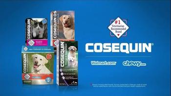 Cosequin TV Spot, 'Gizmo' - Thumbnail 4