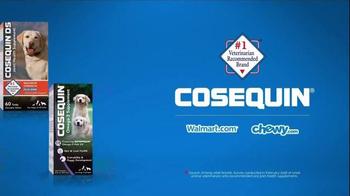 Cosequin TV Spot, 'Gizmo' - Thumbnail 3