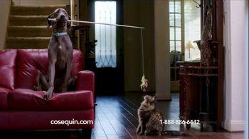 Cosequin TV Spot, 'Gizmo'