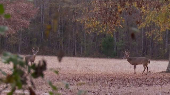Moultrie Mobile TV Spot, 'When You're Not There' - Thumbnail 1