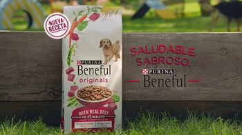 Purina Beneful Originals TV Spot, 'Joel y Totoshka' [Spanish] - Thumbnail 10