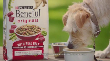 Purina Beneful Originals TV Spot, 'Joel y Totoshka' [Spanish] - Thumbnail 3