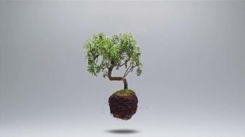 Silk Unsweetened Almondmilk TV Spot, 'Plants Are Light' - Thumbnail 1