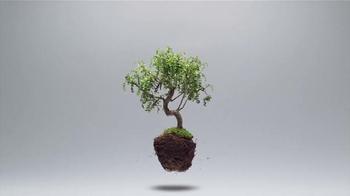 Silk Unsweetened Almondmilk TV Spot, 'Plants Are Light' - Thumbnail 2