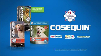 Cosequin TV Spot, 'Toby and Friends' - Thumbnail 5