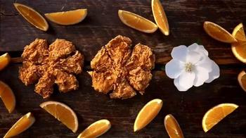 Popeyes Magnolia Blossom Chicken TV Spot, 'Summertime' - Thumbnail 8