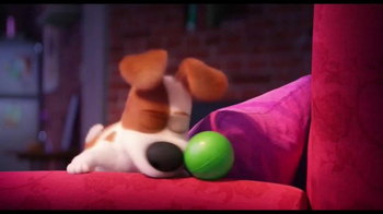 The Secret Life of Pets - Alternate Trailer 10