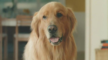 Amazon Prime TV Spot, 'Lion' - Thumbnail 2