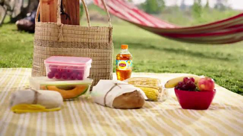 Lipton Iced Tea TV Spot, 'Picnic: What Makes a Lipton Meal?' - Thumbnail 2