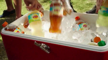 Lipton Iced Tea TV Spot, 'Picnic: What Makes a Lipton Meal?' - Thumbnail 5