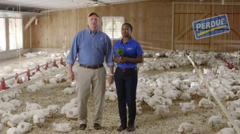 Perdue Farms TV Spot, 'OregaYes' - Thumbnail 1