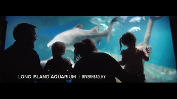 I Love NY TV Spot, 'Parks, Museums and More' - Thumbnail 3