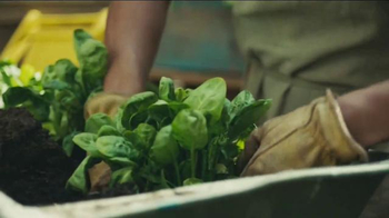 Chase Ink Business Plus TV Spot, 'Squeezed Online Made Juice' - Thumbnail 3