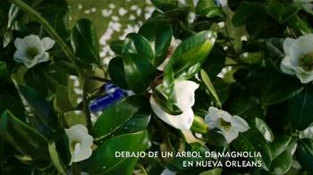 Popeyes Magnolia Blossom Chicken TV Spot, 'El verano' [Spanish] - Thumbnail 1