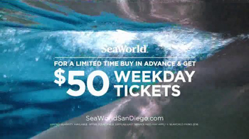SeaWorld TV Spot, 'Real & Amazing: One Ocean Show' - Thumbnail 5