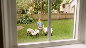 FingerHut.com TV Spot, 'Tame the Backyard' - 7822 commercial airings