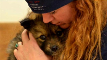 American Humane Association TV Spot, 'Red Star Rescue' Featuring Naomi Judd - Thumbnail 5